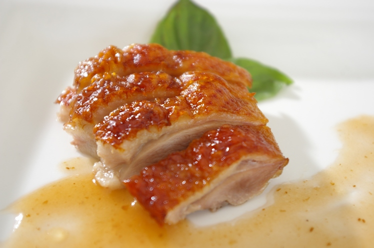 stockvault-duck-meat105755